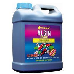 ALGIN POND preparat do zwalczania glonów zielonych 2 L Tropical, 5900469331385