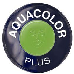 aquacolor plus (light green) farba do makijażu ciała - light green (1102) wyprodukowany przez Kryolan