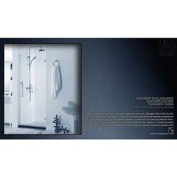 Drzwi prysznicowe AXISS GLASS AN6211WD 600mm L - produkt z kategorii- Drzwi prysznicowe