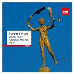 Trumpet & organ od producenta Empik.com