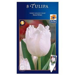 Tulipany Swan Wings (8711148318149)
