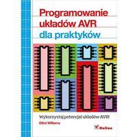 Programowanie układów AVR dla praktyków - Wysyłka od 3,99 - porównuj ceny z wysyłką, oprawa miękka