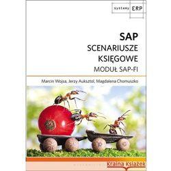 SAP SCNEARIUSZE KSIĘGOWE MODUŁ SAP-FI, książka w oprawie kartonowej