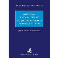 Małżeńska współzależność majątkowa w polskim prawie cywilnym, rok wydania (2013)