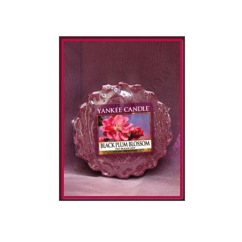 Yankee candle Kwiat czarnej śliwki (black plum blossom) - wosk zapachowy