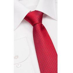 Krawaty, muszki, fulary  Próchnik
