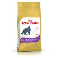 Royal canin british shorthair 10 kg marki Royal canin feline breed - karmy bytowe dla kotów