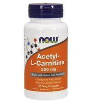 Kapsułki ALC (Acetyl-L-Karnityny) 500mg 50 kaps.