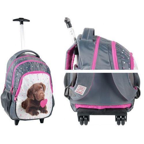 a1e7e702d2056 ▷ Plecaczek plecak mały scooby-doo sdk-305 (Paso) - opinie / ceny ...