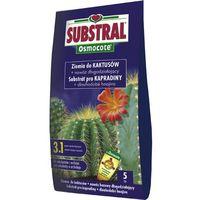 Gotowe podłoże do kaktusów marki Substral
