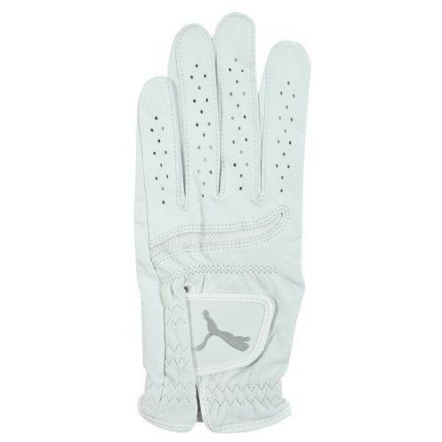 Puma Golf Rękawiczki pięciopalcowe bright white/black