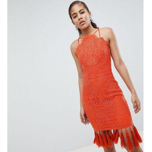 Lace detail pencil midi dress with v back - orange Chi chi london tall