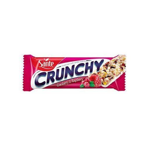 Baton crunch - 40g - cranberry raspberry vanilla coat Sante