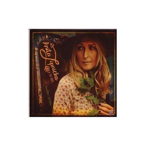 Zdjęcie produktu Warner music Miod i dym - anita & the hats lipnicka (płyta cd)