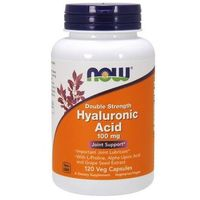 Hyaluronic Acid 100mg + Antyoksydanty 120 kaps.