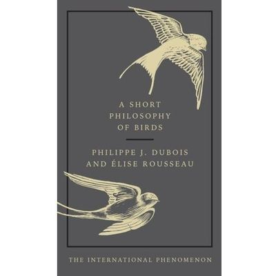 Literatura obcojęzyczna Dubois Philippe J., Rouddeau Elise InBook.pl