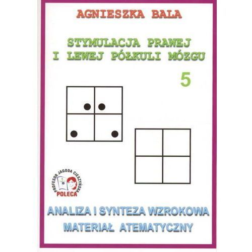 Analiza i synteza wzrokowa Materiał atematyczny (44 str.)