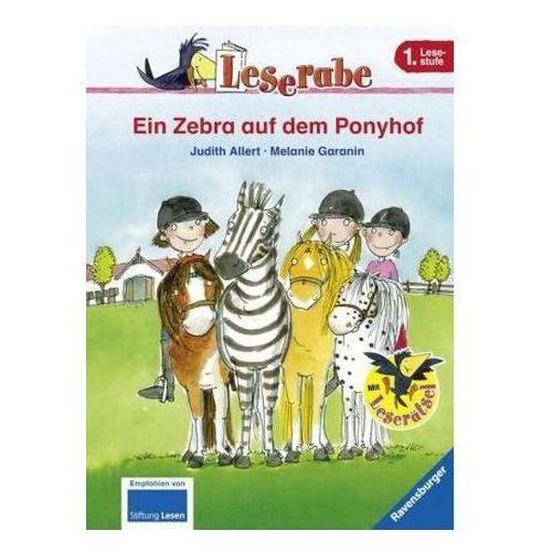 Ein Zebra auf dem Ponyhof Allert, Judith