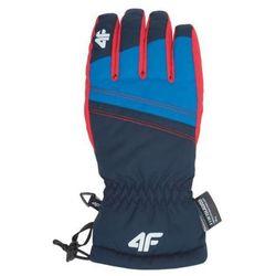 Odzież do sportów zimowych  4F Perfectsport