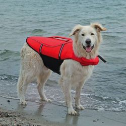 Ubranka dla psów  TRIXIE Zooplus