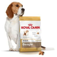 ROYAL CANIN BEAGLE - 12KG + PROMOCJA 4+1 GRATIS!!!