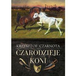 Romanse, literatura kobieca i obyczajowa  Zysk i S-ka InBook.pl
