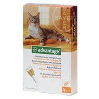 Bayer advantage - krople na pchły dla kotów o masie ciała <4kg 4x0,4ml