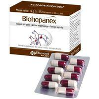 Biohepanex 40 kaps. - kapsułki dla psów i kotów wspomagające wątrobę marki Biowet puławy