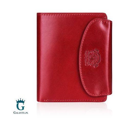 e839aaae695d1 Zapinany portfel damski 009 da db (Stefania leather) - sklep ...