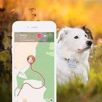 Tractive GPS Tracker dla psów i kotów