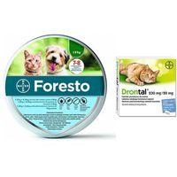 foresto obroża dla kotów i psów poniżej 8kg + drontal - preparat przeciwpasożytniczy dla kotów 2tabl. marki Bayer