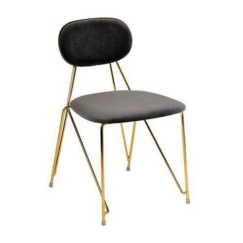 Krzesło moly ciemny szary - welur, podstawa złota marki King home