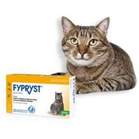 Fypryst 50 mg Kot 3 pipety (5909990632466)
