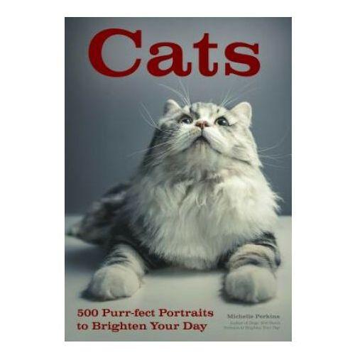 Michelle Perkins - Cats