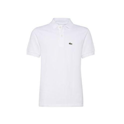 LACOSTE Koszulka biały (3614036484238)
