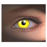 Colourvue glow marki Maxvue vision