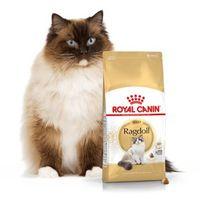 ragdoll adult 10kg | darmowa dostawa - 10000 marki Royal canin