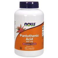 Pantothenic Acid (Kwas Pantotenowy) 500mg 250 kaps.
