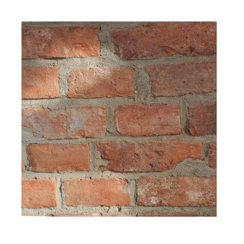 Płytki z cegły rozbiórkowej - lica klasyczne - mix marki Retrocegiełka