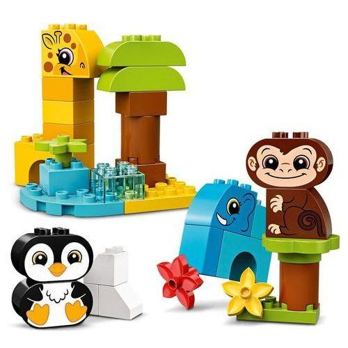Lego DUPLO Zestaw kreatywny 10934