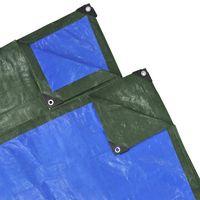 vidaXL Plandeka przeciwdeszczowa 2x10 m PE 210g/m3, zielono-niebieska (8718475992257)