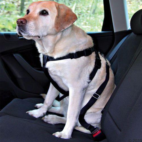Trixie: Pas bezpieczeństwa dla psów - Rozm. S: obwód 30 - 60 cm