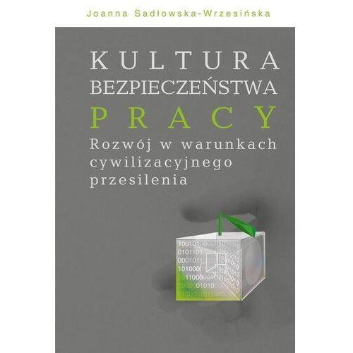 Kultura bezpieczeństwa pracy - Joanna Sadłowska-Wrzesińska (9788375458701)