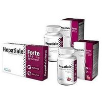 Hepatiale forte large breed (duże psy) 40 tabl. marki Vetexpert
