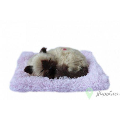 Maskotka interaktywna Śpiący kotek brązowy na poduszce +DARMOWA DOSTAWA przy płatności KUP Z TWISTO, 5_697802