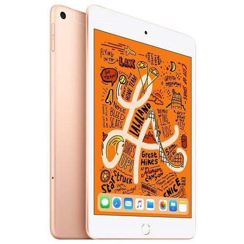 Apple iPad mini 256GB 4G