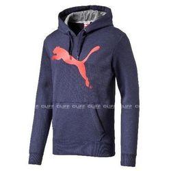 Bluzy męskie Puma CLIFF SPORT