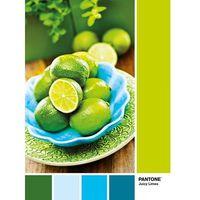 Puzzle 1000 Pantone Juicy Limes
