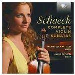 Brilliant classics Complete violin sonatas (5028421952925)