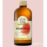 Kombucha Imbir / SOKI COLDPRESS / DOSTAWA W 24h / DETOKS SOKOWY / DIETA SOKOWA